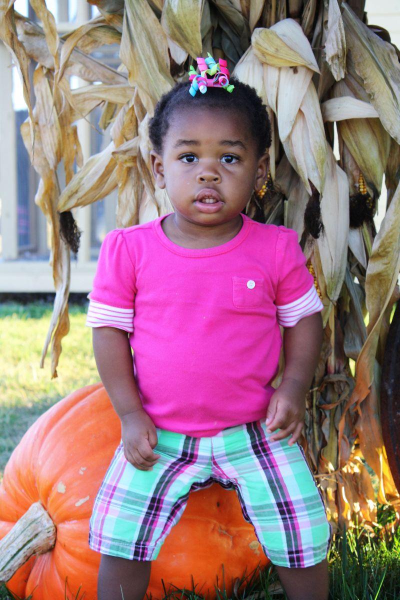 Ainsleigh pumpkin
